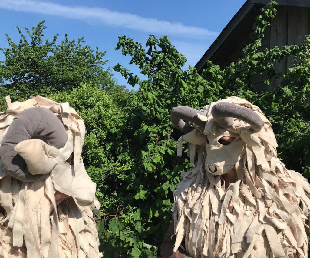 Olly en Cody bij de schaapskooi in Orvelte